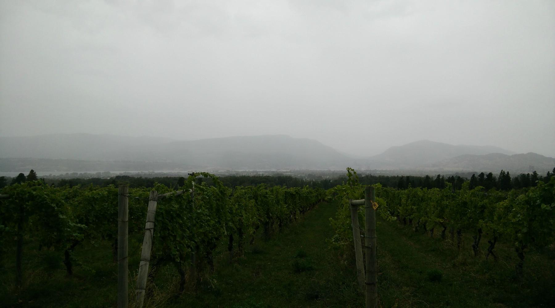 Schlechtes Wetter in Kelowna